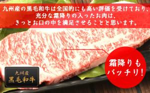 九州産黒毛和牛サーロインステーキ